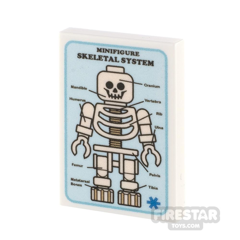 Custom Printed Tile 2x3 Medical Poster Skeletal System