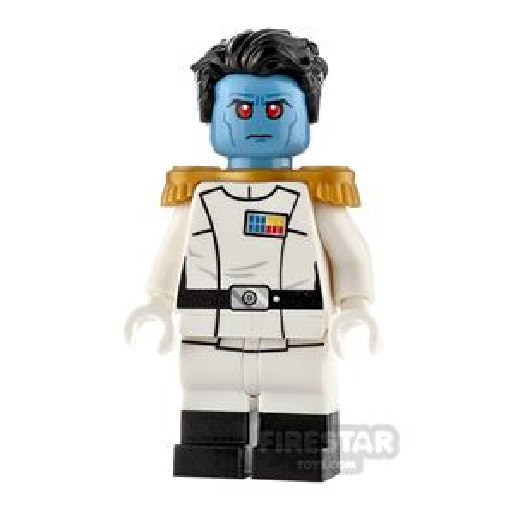 Custom Design Mini Figure - SW Artistic Admiral