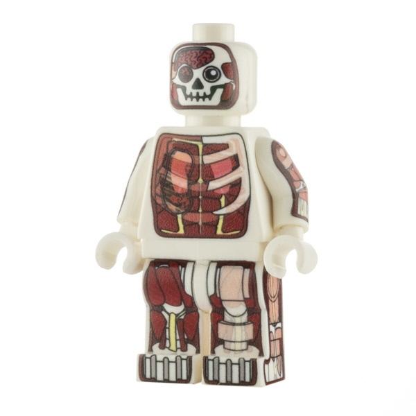 Custom Design Mini Figure - Dr Anatomini